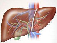 Защитные свойства  масла черного тмина при заболеваниях печени